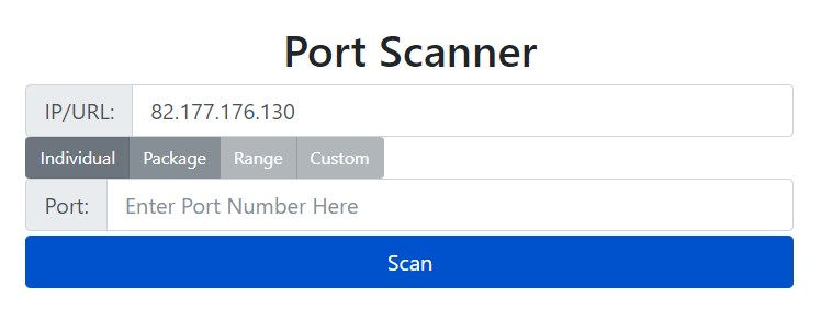 WhatIsMyIP Port Scanner